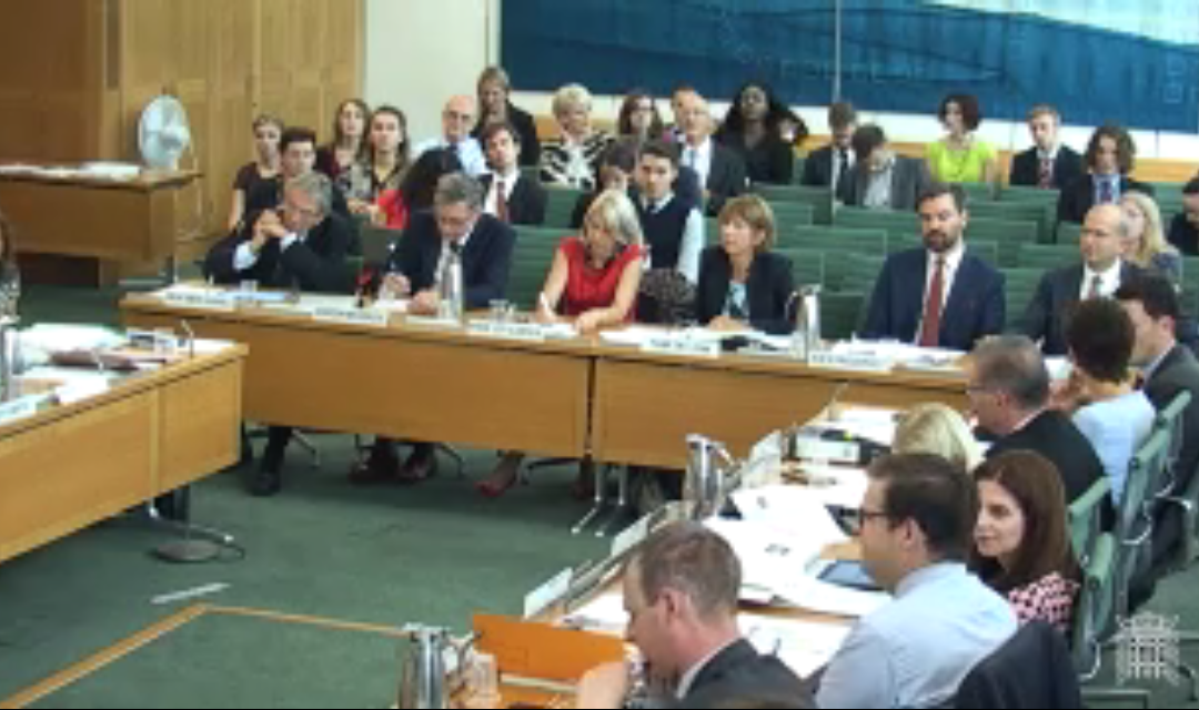 GuildHE gives evidence to Higher Education and Research Bill Committee
